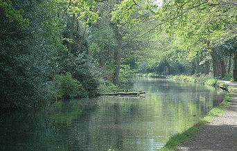 Basingstroke_canal